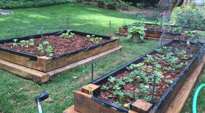 From Wooden Play Set to Raised Garden Bed